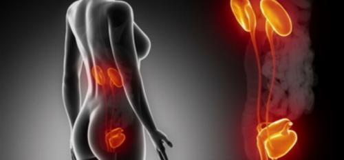 Trattenere l'urina: cosa comporta?