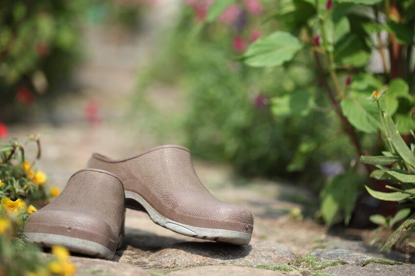 Fare passeggiate di almeno 30 minuti è di grande beneficio per la salute delle nostre gambe.