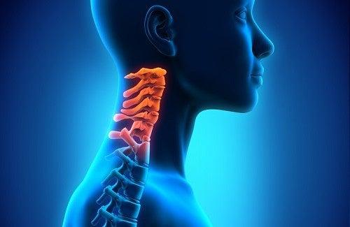 Vertigini da disturbo cervicale: i 5 esercizi più efficaci