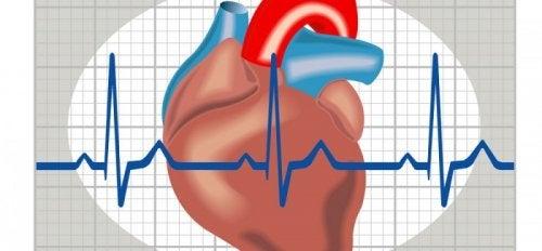 Prevenire la tachicardia e saperla riconoscere