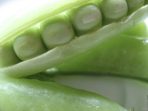 Benefici dei legumi per la salute