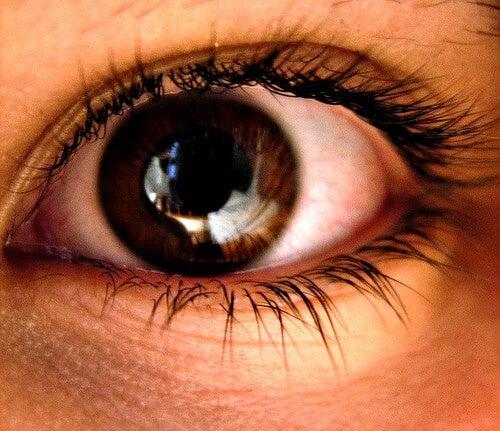 pupille dilatate dall'ansia