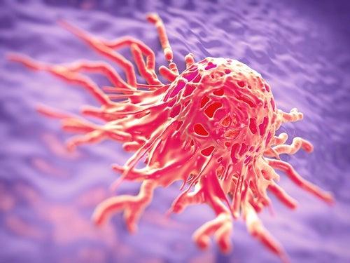 Cellule cancerogene