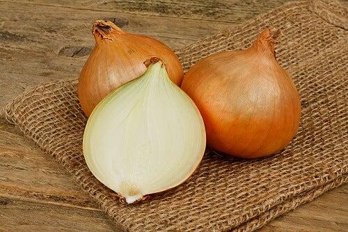 La cipolla contiene una grande quantità di prebiotici.