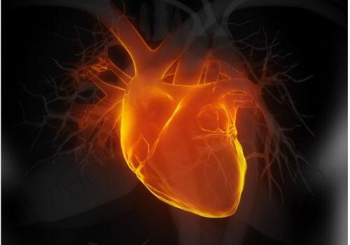 I sintomi di un pre-infarto sono un chiaro segnale di funzionamento anomalo del cuore