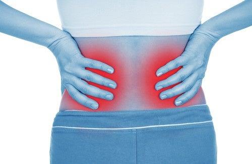 Malattia Renale Cronica: 5 cose sul benessere dei reni