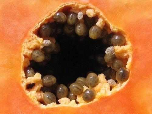 Un frullato di papaya è l'ideale per eliminare i parassiti