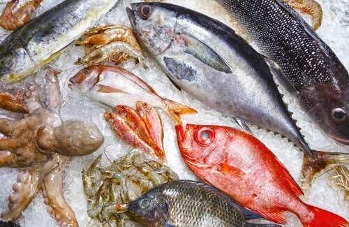 5 specie di pesci da evitare