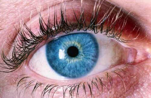 Diagnosticare l'Alzheimer dagli occhi