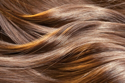 Maschera efficace per capelli da forfora e perdita