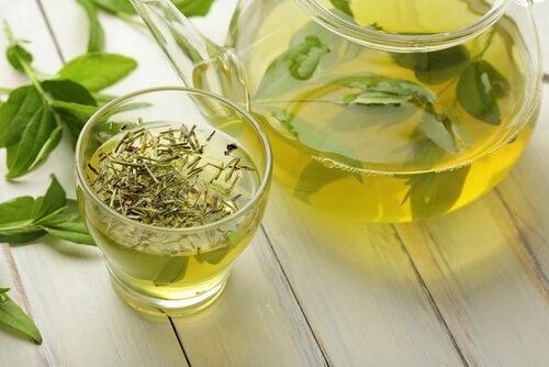 preparare correttamente i tè - Te verde