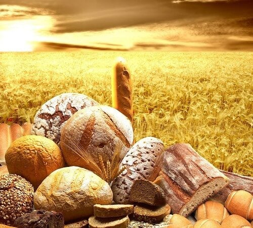 Pane e frumento