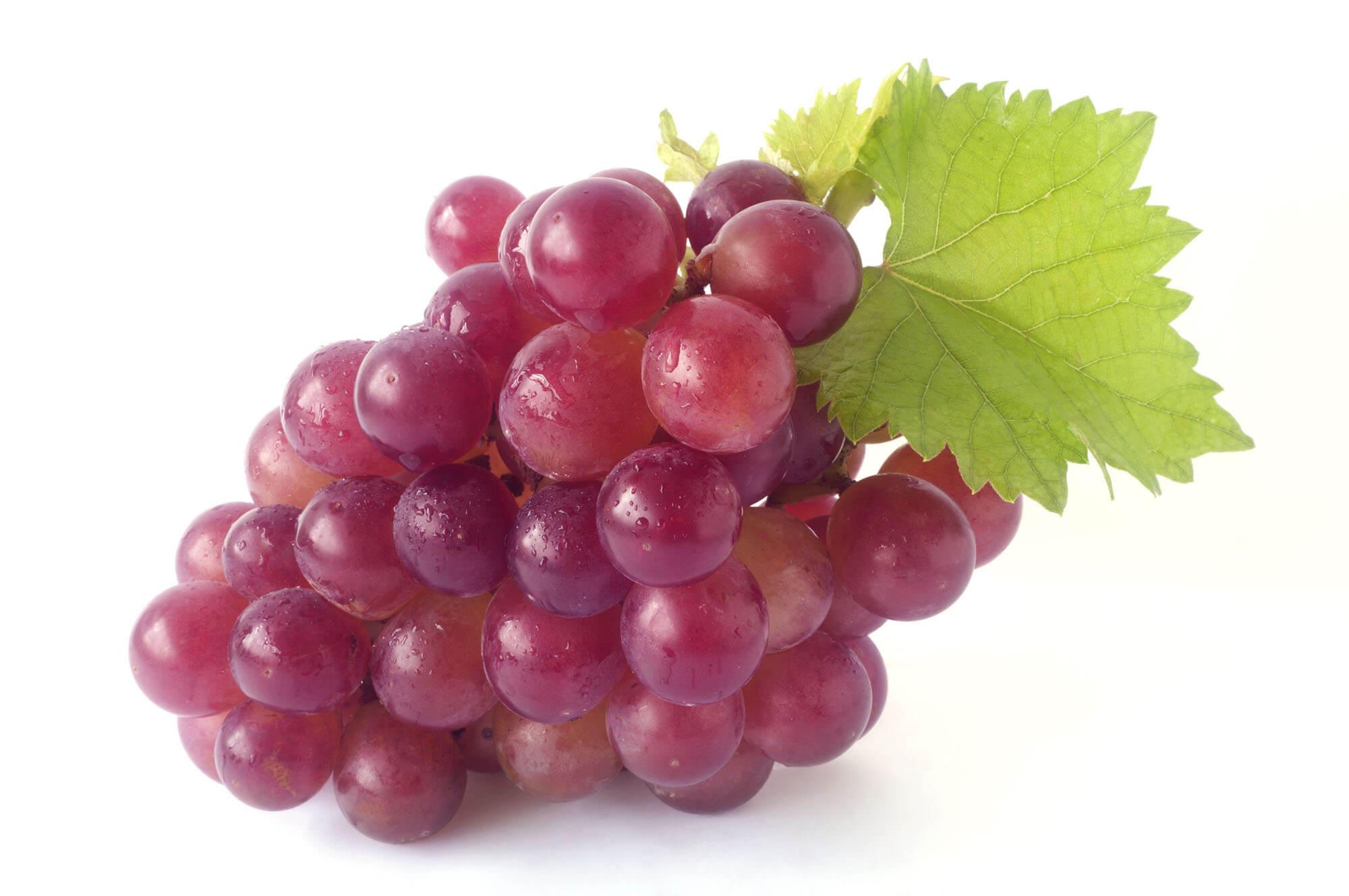 Benefici dell'uva nera