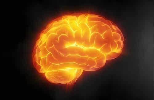 7 consigli per mantenere il cervello in forma