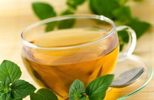 Tè verde per perdita di peso e risposte di intestini
