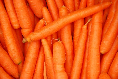carote digestione