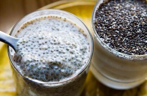 Dimagrite includendo i semi di Chia nella vostra dieta