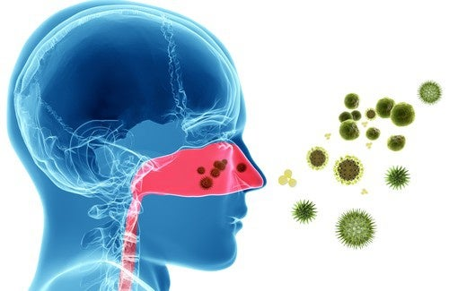 Rimedi naturali per le allergie nasali