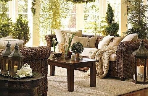 Purificare l'ambiente domestico grazie alle piante