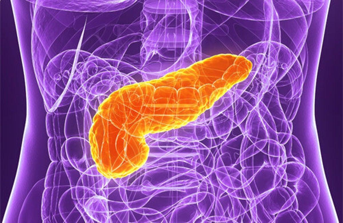 5 Consigli Per Prendersi Cura Del Pancreas Vivere Piu Sani