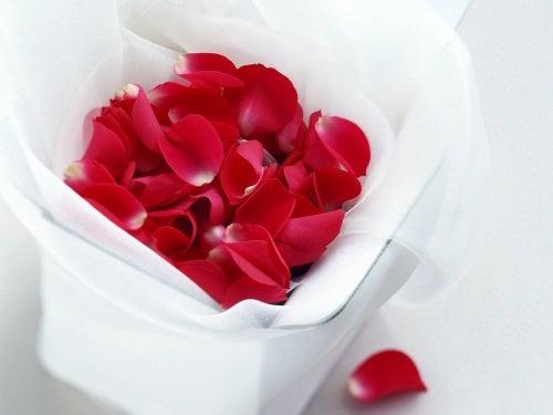 petali di rosa per ringiovanire lo sguardo