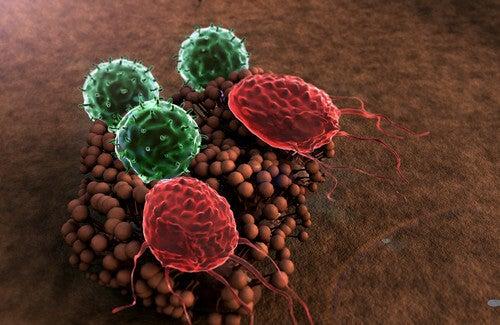 Sistema immunitario debilitato: sintomi e cure