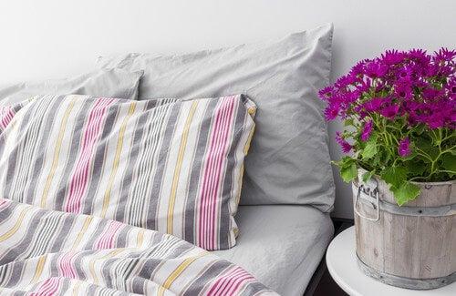 come rendere la camera da letto un ambiente sano - vivere più sani - Piante Da Camera Da Letto