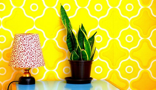 Come rendere la camera da letto un ambiente sano - Vivere più sani