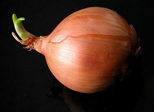 La cipolla oltre a essere usata in cucina è anche un ottimo rimedio naturale per molti disturbi