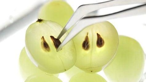 acini d'uva con semi