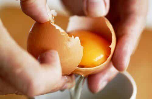 Perché bisogna mangiare uova abitualmente?