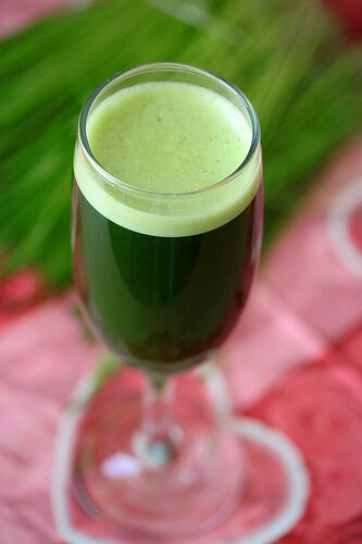 Frullato-verde-per dimagrire
