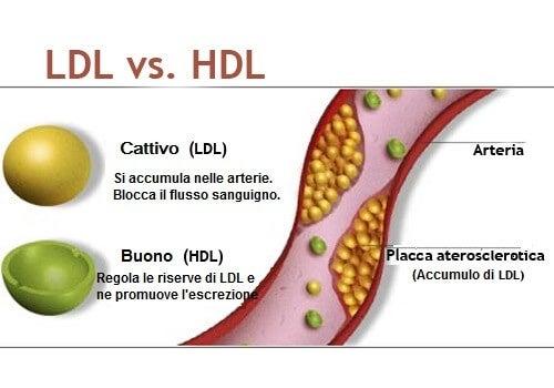 colesterolo tra le abitudini che danneggiano il cuore