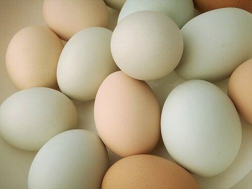 Quante uova