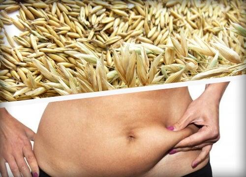 I migliori cereali per perdere peso