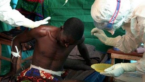 Ebola: cosa bisogna sapere?
