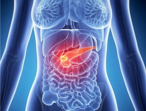 L'infiammazione del pancreas può causare dolore alla parte destra dell'addome