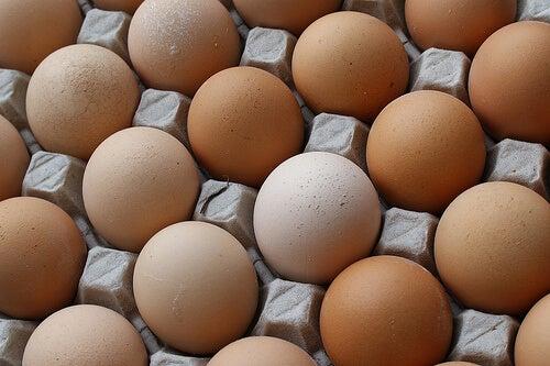 Uova di allevamento
