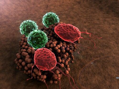 8 abitudini che distruggono il nostro sistema immunitario