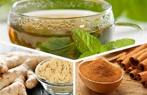 Tè verde, zenzero e cannella: un toccasana per l'organismo
