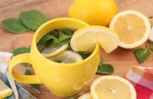 il limone nellacqua aiuta a bruciare i grassin