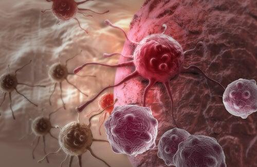 il latte vaccino e il cancro