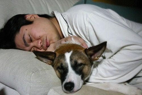 dormire-ormoni