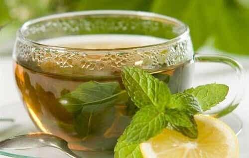 Varietà di tè e infusi e loro benefici