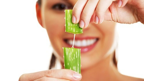la clorofilla nell'Aloe vera