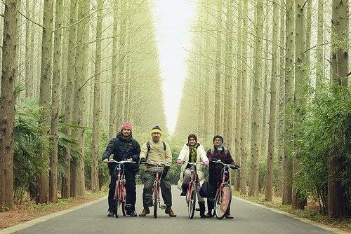 Persone in bicicletta nel bosco