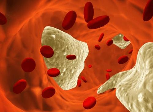 7 miti che dovreste conoscere sul colesterolo