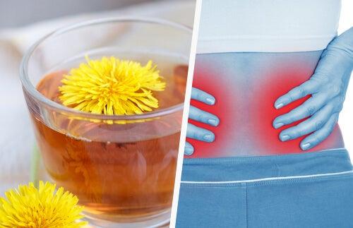 5 semplici modi per pulire i reni