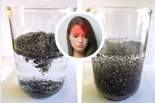 I migliori semi per trattare l'emicrania