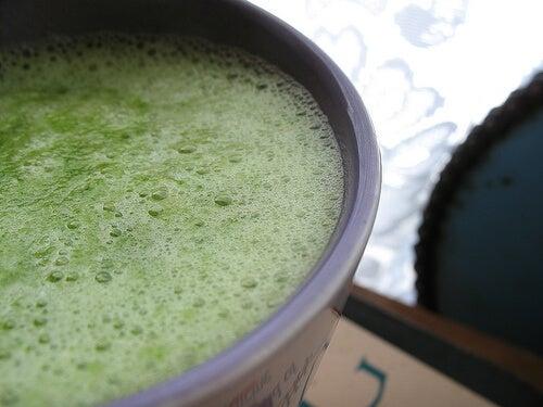 la spirulina è un'alga dallo straordinario apporto nutrizionale